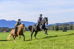 Equitazione Roma